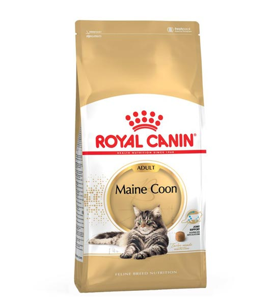 MAINE COON 2kg